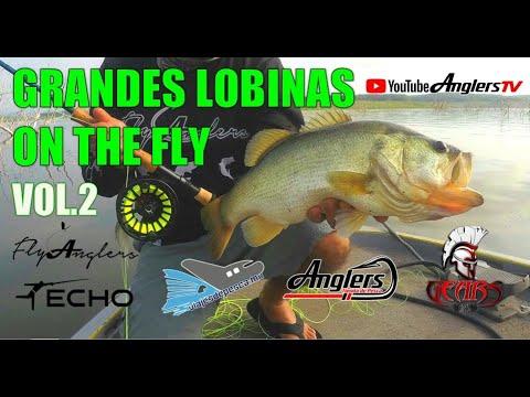 LOBINAS PESCADAS CON MOSCA VOL.2 / BASS ON THE FLY VOL.2