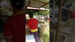 preview picture of video 'DURIAN KPG SEMPENEH BT.KURAU - Para Peniaga'