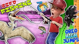 BIRD FISHING Ouch!! Little Dog + Sugar = High Jumps FUNnel V Fam Shawn Reacts Vlog