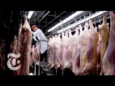 Video Chasing Outbreaks: How Safe Is Our Food? | Retro Report | The New York Times