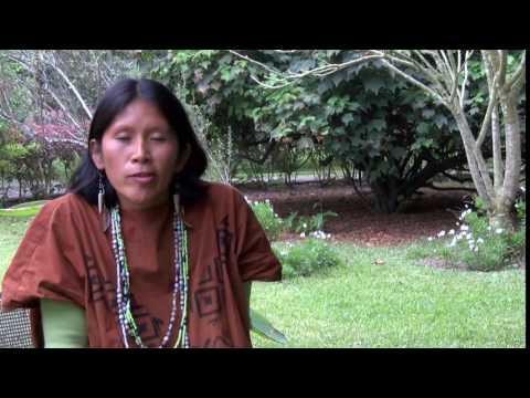 Primer curso de capacitación a pueblos indígenas sobre evaluación ambiental