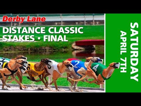 Derby Lane 2018 Distance Classic