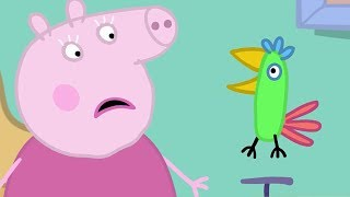 Peppa Pig Français Polly!   Dessin Animé Pour Enfant #PPFR2018