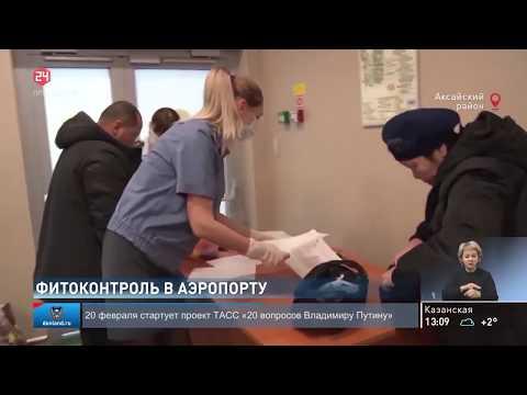 Специалисты Управления Россельхознадзора проводят фитосанитарный контроль в аэропорту «Платов»
