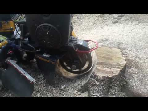 A short video showing the equipment we use to remove stumps from our clients property. We offer tree stump removal and grinding services with our 38 HP stump grinder that makes quick work of any stump. We can even remove all of the grindings and refill the area with topsoil and grass seed. After the seed sprouts, you will forget that the tree was ever there!
