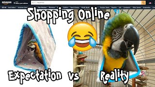 Expectations vs Reality Shopping for Parrot Supplies Online