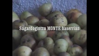 Video del alojamiento Casa Rural Monte Baserria