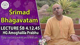 Srimad Bhagavatam(4,12,45) By HG Amoghlila Prabhu On 3rd Aug, 2014.