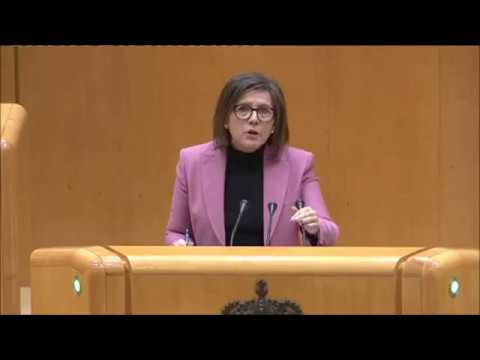 Angulo habla de El Hueco en el Senado.