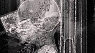 Self Spiller - Rot on Root