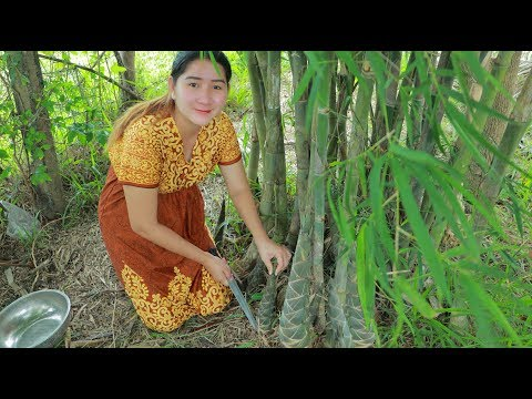 Yummy Dried Bamboo Shoot Cooking - Dig Bamboo Shoot From Bamboo Tree - Cooking With Sros