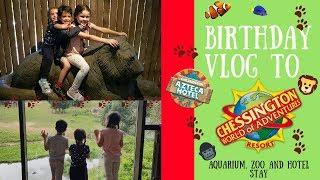 FULL DAY BIRTHDAY VLOG TO CHESSINGTON || Aquarium, Zoo Animals, Ride POV and Hotel fun
