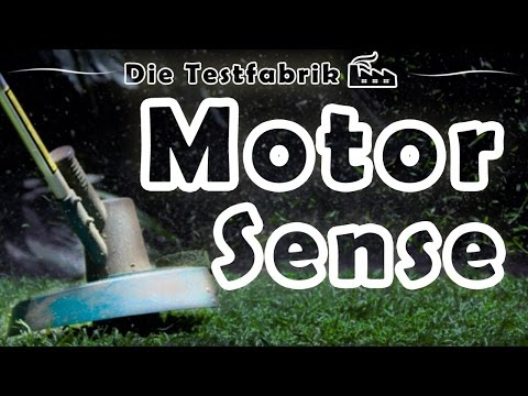 🏡 Motorsense Test – 🏆 Top 3 Motorsense im Test