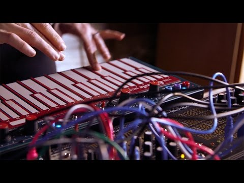 BEMI LEM218: Buchla Touch Plate Keyboard Controller for 200e, Eurorack and  beyond
