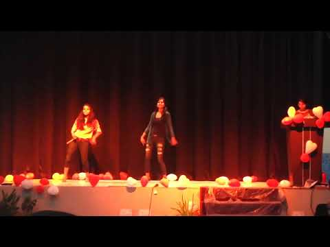 Bhagini Nivedita College video cover1