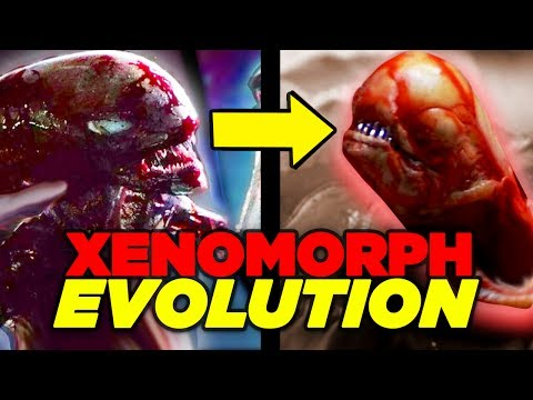 Alien Covenant - Xenomorph EVOLUTION Explained (Ending Explained)