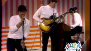 "THE ANIMALS ""Don't Bring Me Down"" on The Ed Sullivan Show"