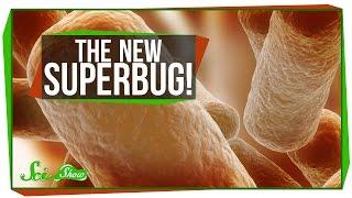 The New Superbug!