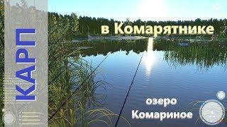 Русская рыбалка 4 - озеро Комариное - Карп в Комарятнике