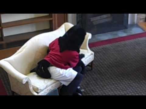 Rosemont College - video