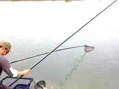 Pesca di tessitore di meps di video