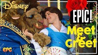 Disney Princess Meet and Greet Compilation - Ask The Disneyland Princesses!