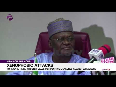 Xenophobia: Foreign Affairs Minister Calls for Punitive Measures on Attackers
