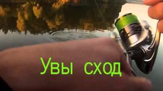 Отчеты о рыбалке рогачев