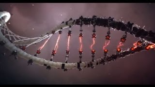 Theory of DNA Science - MESSAGE FROM GOD
