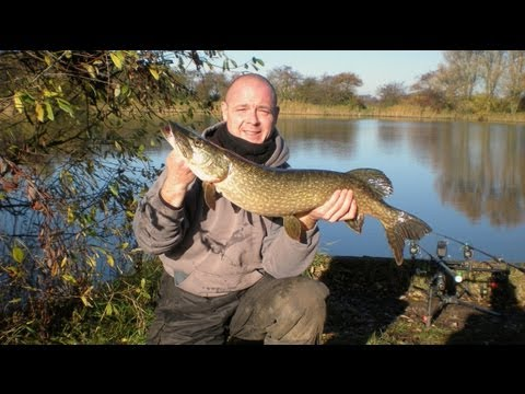 Pike Fishing at Brickyard Pond (Hull & District Angling Association)