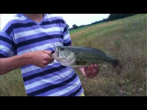 RCF: Pond Fishing Ep.5: Big ol Bass