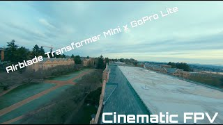 Airblade Transformer Mini. GoPro Lite (naked GoPro Hero6). Cinematic FPV(one take).