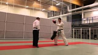 Hokutoryu Jujutsu Training Clips - Kicking Techniques
