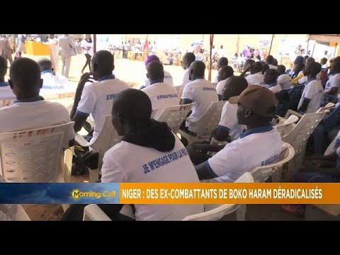 Niger: Ex-Boko Haram combatants complete re-integration programme [Morning Call]