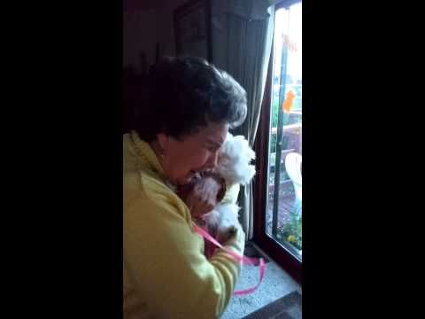 Puppy Surprise For 90yr Old Grandma