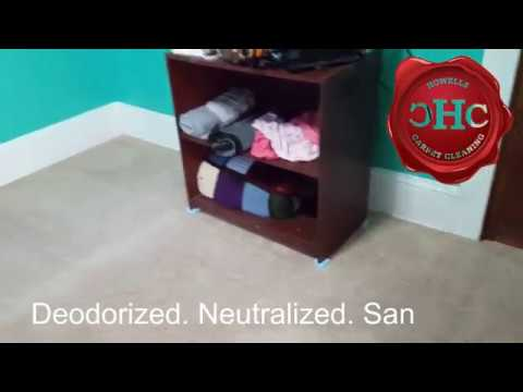Carpet Cleaning Results – Happy Valley, OR
