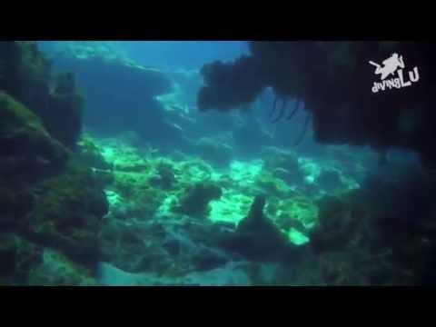 Tauche Kuba - Maria la Gorda, Maria La Gorda,Kuba