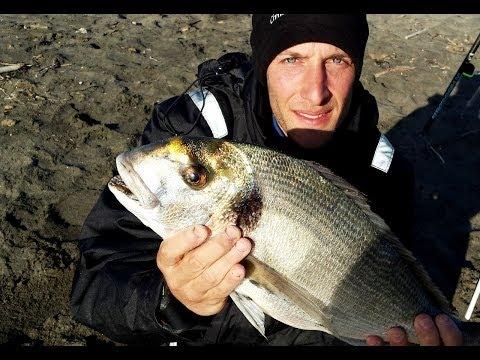 Il catalogo che polarizza punti per pesca