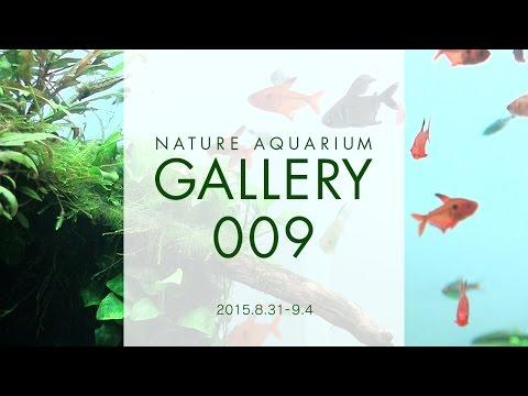 [ADAview] NATURE AQUARIUM GALLERY#009(EN)