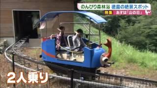 徳島県三好市奥祖谷観光周遊モノレール