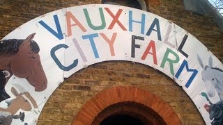 preview picture of video 'Introducing Vauxhall City Farm'