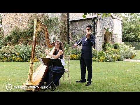 Satin Violin - Beautiful Violin & Harp