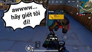 PUBG Mobile - Phản Ứng Của Anh Tây Khi Được Tặng Cây AWM :)) | Solo Squad FPP