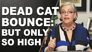 DEAD CAT BOUNCE: But Only so High