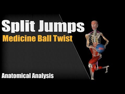 Split Jumps With Medicine Ball Twist | Anatomical analysis