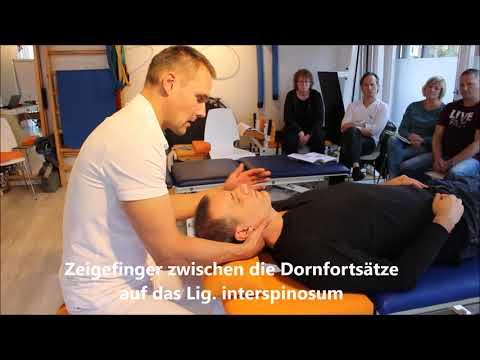 Übungen in Osteochondrose der thorakalen und lumbalen Videokarte