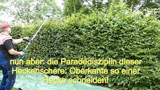 Parkside 40V Akku Kombigerät PDKGA 40-Li A1 - Heckenschere Praxis