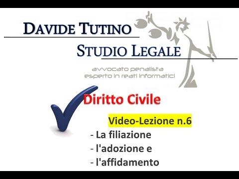 Diritto Civile - Video lezione n.6: La filiazione, l'adozione e l'affidamento