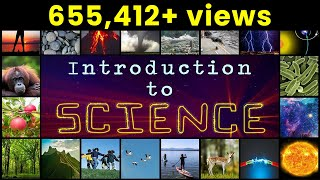 What Is Science? | Introduction To Science | Letstute