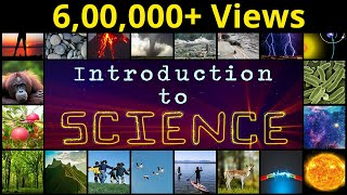 What is Science? | Introduction To Science | Basic Facts Everyone Should Know | LetsTute